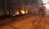 Chile apela por ayuda internacional para combatir incendios forestales