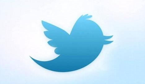 Revelan nombre del ave azul de Twitter