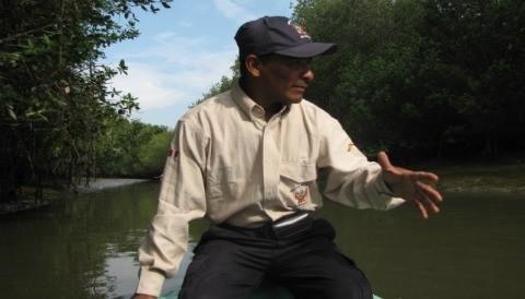 Santuario Nacional Los Manglares de Tumbes, 24 años conservando el único bosque de manglar del norte peruano