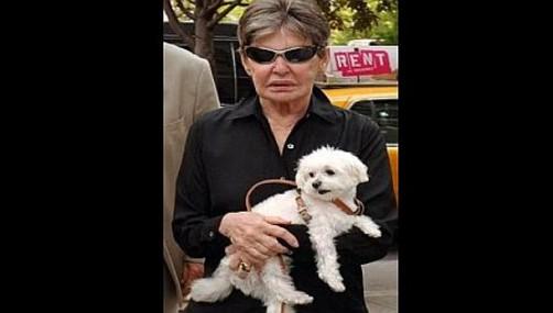 Estados Unidos: Murió el perro más rico de mundo