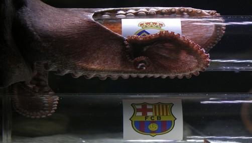 Pulpo 'Iker' da como ganador de la Supercopa al 'Barza'