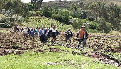 Ministerio de agricultura producci n agropecuaria creci for Ministerio produccion