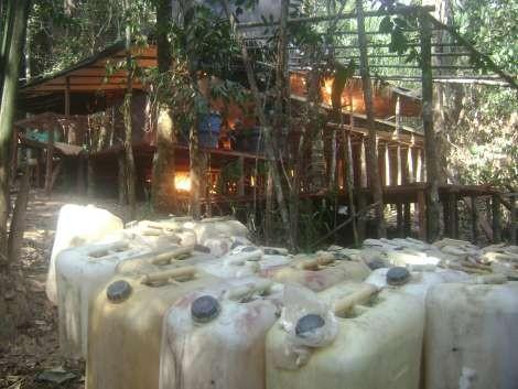 Procurador de Colombia: las FARC se beneficiarían con la legalización de drogas