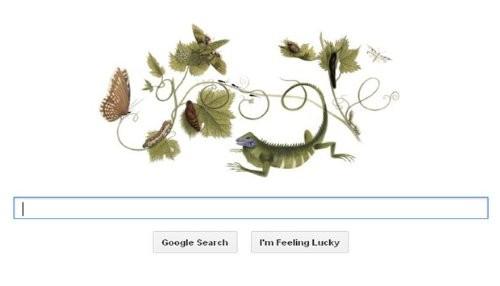 Google honrra a Maria Sibylla Merian con un nuevo doodle