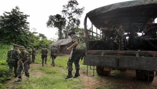 Mueren 5 miembros de las FARC tras enfrentamientos