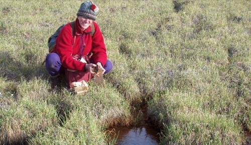Después de 4 siglos de hibernación plantas son revividas por investigadores de la Universidad de Alberta en Canadá