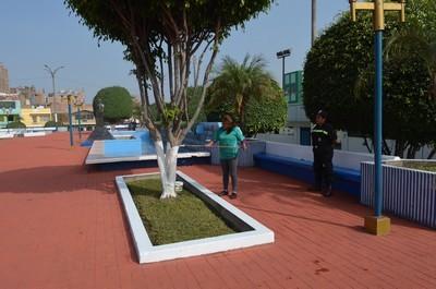 Municipalidad ejecuta campaña de embellecimiento en Carmen de la Legua