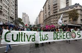 Uruguay: La legalización del consumo de marihuana pasa la valla de la Cámara de Diputados