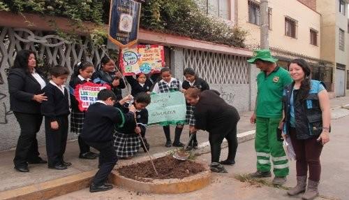 Escolares siembran cerca de 200 árboles en principales avenidas de Barranco