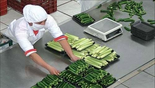 Se crearon más de 109 mil 300 nuevos empleos en Lima Metropolitana