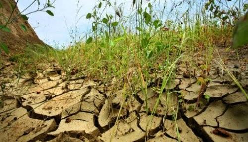Expertos de América Latina se reúnen para incorporar el enfoque de cambio climático en la inversión pública