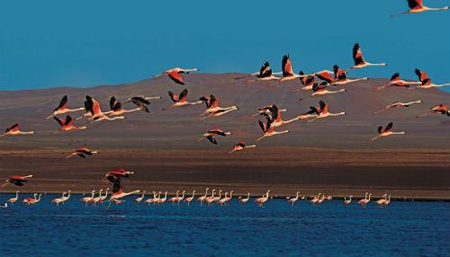 Conservación y optimización de servicios turísticos en áreas protegidas incrementó visitantes hasta en 120%