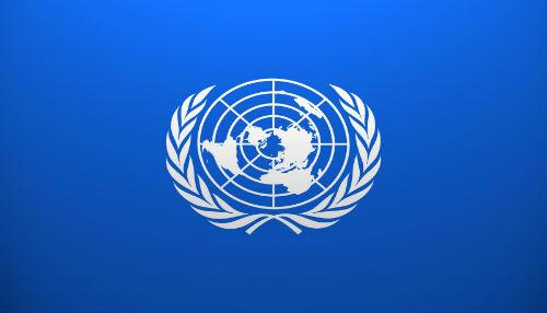 Pueblos Indígenas del mundo exigirán a la ONU implementar sus derechos