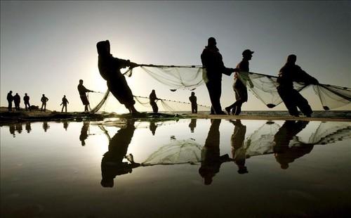 Una nueva tregua de 24 horas en la Franja de Gaza