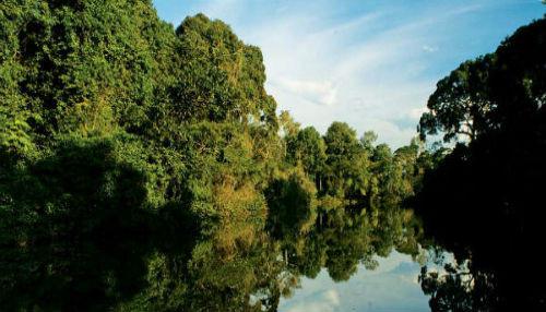 Candidatos al municipio iquiteño de Napo se comprometen a estrategias ambientales