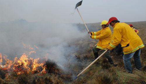 SERNANP implementa brigada especial contra incendios forestales en el Parque Nacional del Manu