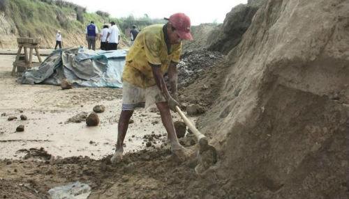 Perú y Ecuador unidos para erradicar el trabajo infantil en la zona de frontera