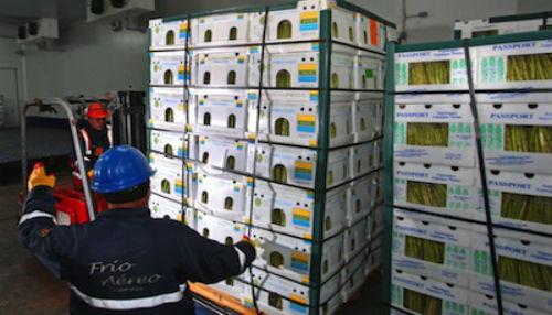 MINAGRI designará agentes agrícolas en el exterior para abrir nuevos mercados a productos
