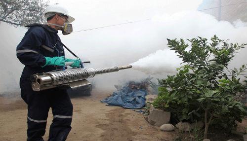 Más de 1600 viviendas fueron fumigadas en la Región Tumbes para prevenir ingreso de Chikungunya