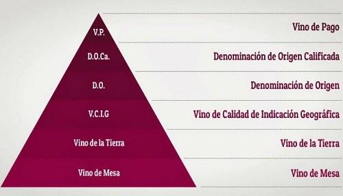 ¿Qué son los vinos de pagos?