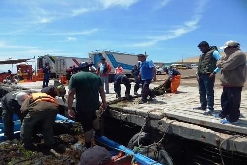 Ica: realizan intervención contra pesca ilegal en la Reserva Nacional de Paracas