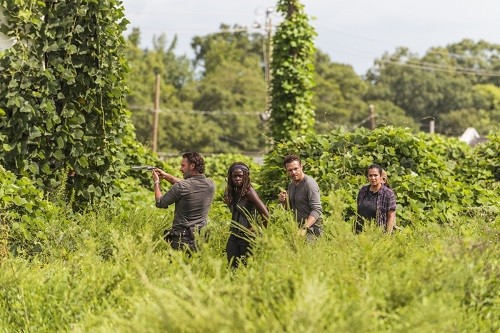 The Walking Dead llega en Febrero a FOX Premium en América Latina