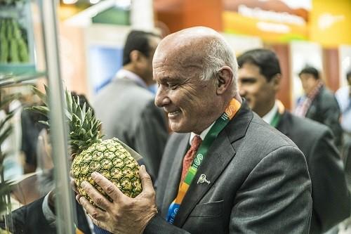 Productores de frutas y hortalizas peruanos logran negocios por más de US$ 200 millones en Alemania