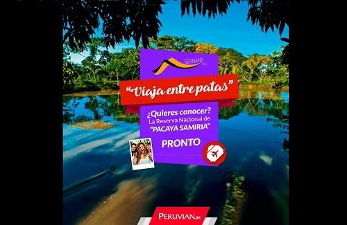 SERNANP lanza el concurso 'Viaja entre patas' a la Reserva Nacional Pacaya Samiria