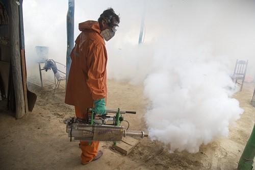 Minsa invoca a la población a permitir la fumigación de viviendas en Huacho