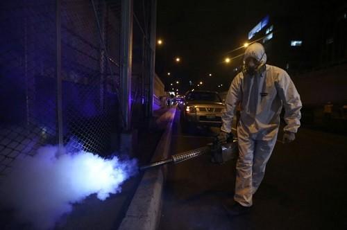 MML realiza con éxito campaña de fumigación y desratización en Vía Expresa de la Av. Grau
