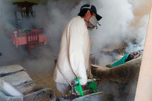 Minsa continúa la fumigación de viviendas en Coishco, para disminuir presencia del zancudo que transmite dengue