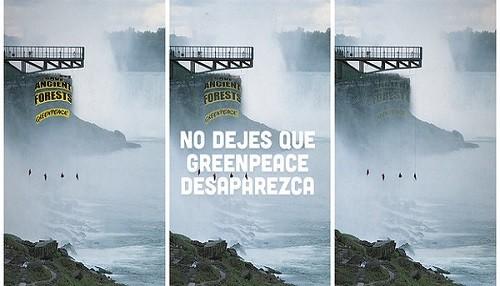 Greenpeace denuncia el ataque a la libertad de expresión por parte de una empresa maderera