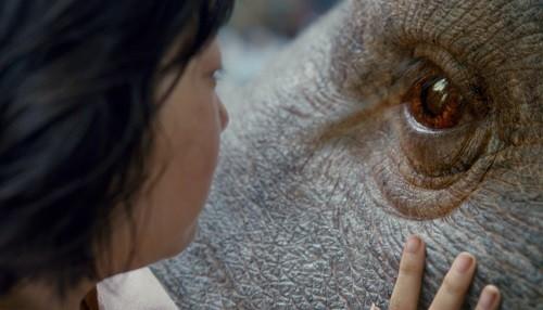 Netflix revela trailer oficial y arte principal de Okja