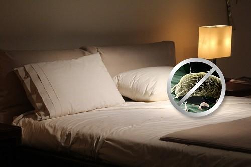 Recomiendan reemplazar las almohadas cada 3 meses para evitar alergias y enfermedades respiratorias