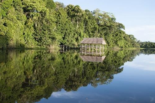 Reserva Comunal Amarakaeri: Aprueban proyecto ecoturístico que beneficiará a seis comunidades de Madre de Dios