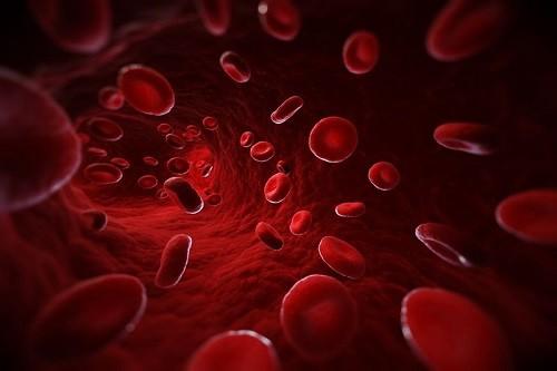 Todo lo que debe saber sobre la trombosis