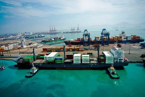 ADEX: APEC ayudaría a desarrollar capacidades para la industria