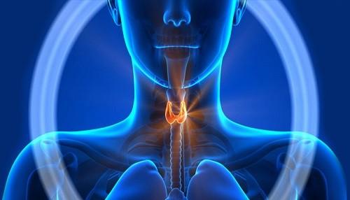 Cáncer de Tiroides, una enfermedad con pronóstico alentador