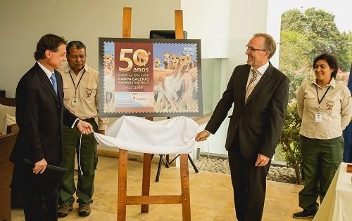 10 mil estampillas mostrarán vicuñas de la RN Pampa Galeras-Bárbara D´Achille