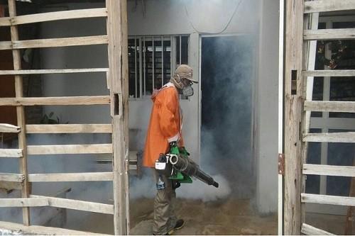 Declaran Emergencia Sanitaria por riesgo de dengue en Tumbes
