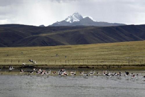 MINAM inaugura Centro de Investigación para la promoción, recuperación y conservación de ecosistemas de montaña