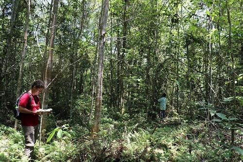 Loreto fortalece conservación de bosques de varillal con nueva Área de Conservación Privada reconocida por 50 años