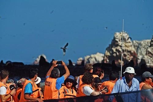 Islotes Palominos: El área natural protegida que debes visitar si vas al Callao