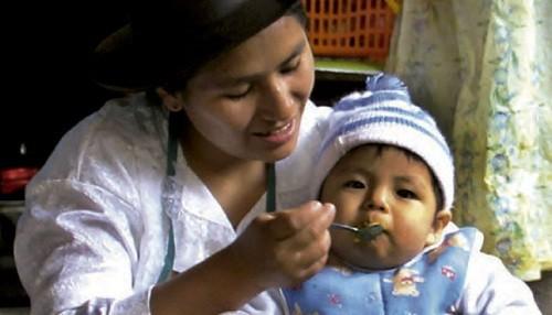 Programas sociales podrán adquirir alimento infantil fortificado para contribuir con la reducción de la anemia