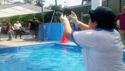 Doce piscinas fueron declaradas no saludables en Lima Sur
