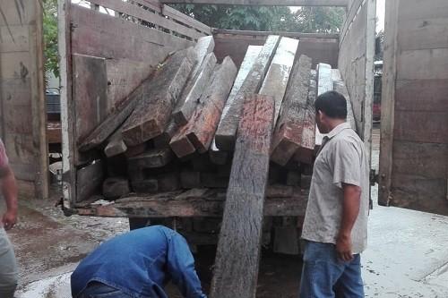 Trabajo articulado entre SERNANP y PNP detiene actividades de tala ilegal en Bosque de Protección Alto Mayo