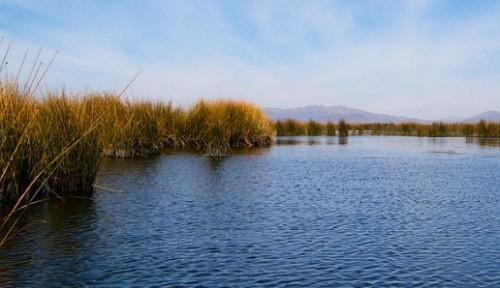 Los humedales constituyen una solución para afrontar los efectos del cambio climático