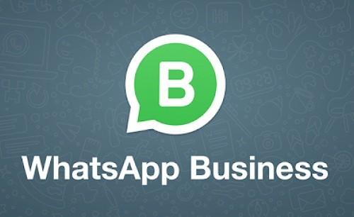 WhatsApp Business beta ahora disponible para iOS