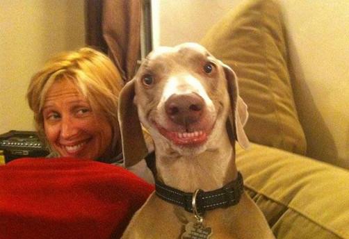 Video: el perro basquetbolista la rompe en YouTube