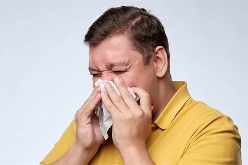 El mundo debe prepararse para una pandemia de gripe 'inevitable', advierte la OMS